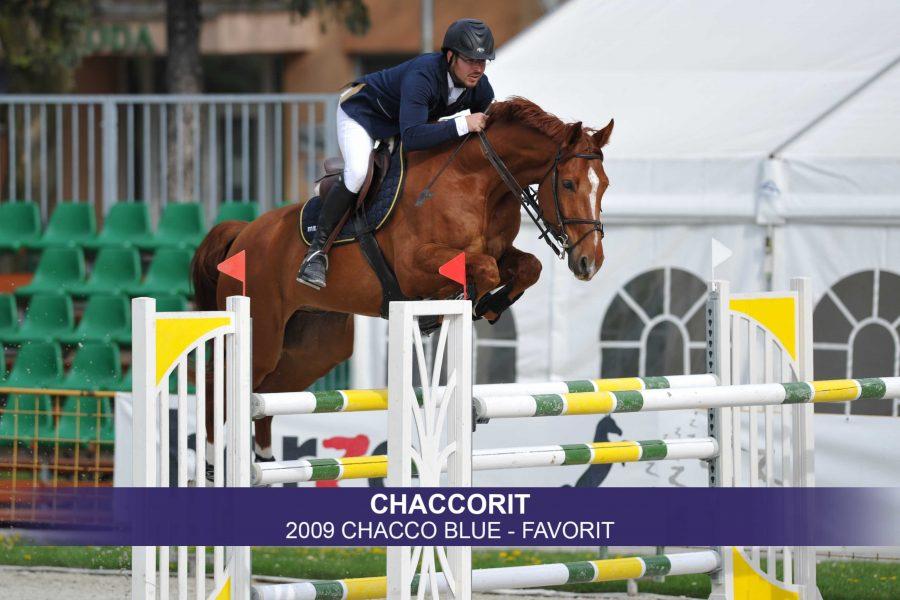 1-Chaccorit