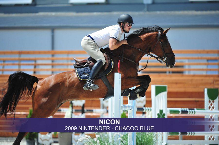 1-Nicon