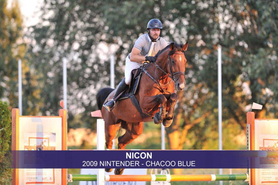 2-Nicon