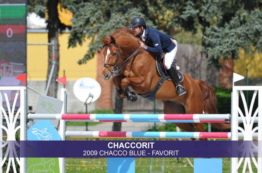 3-Chaccorit